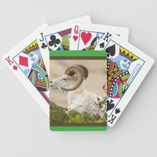 Cartões de jogo do póquer da bicicleta dos animais carta de baralho