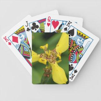 Cartões de jogo - íris do olho do tigre baralho para truco