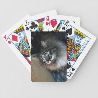 Cartões de jogo irresistíveis da bicicleta do gato cartas de baralhos