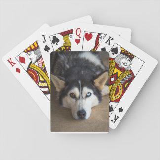 Cartões de jogo roncos do cão jogo de baralho