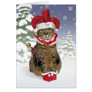 Cartões de Natal do gato do bobo da corte do papai