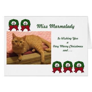 Cartões de Natal do salvamento do gato de