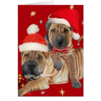 Cartões de Natal dos irmãos de Shar-pei