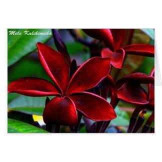 Cartões de Natal havaianos