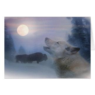 Cartões de natal lobo e búfalo do nativo americano