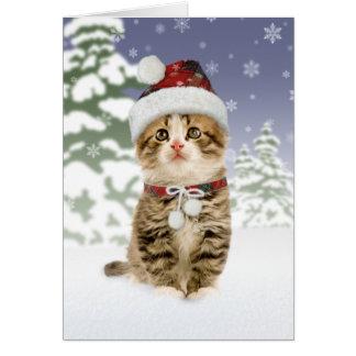 Cartões de Natal nevado do gatinho