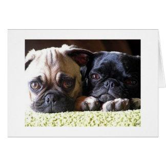Cartões de nota do amor do Pug