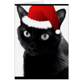Cartões de nota do feriado do gato preto