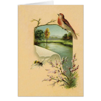 Cartões de nota do pássaro e da abelha do vintage