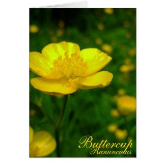 Cartões de páscoa feitos sob encomenda das flores