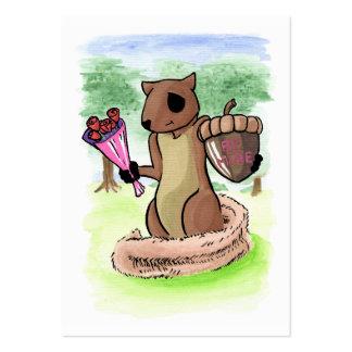 Cartões de Romeo do esquilo mini Cartão De Visita Grande