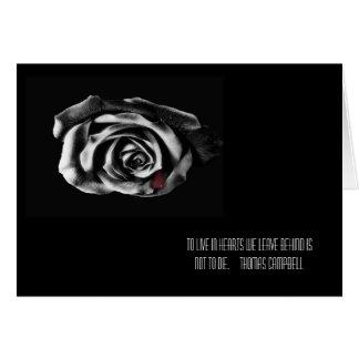 Cartões de simpatia do rosa do preto