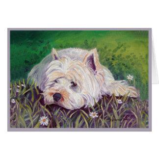 Cartões de Terrier branco de montanhas ocidentais