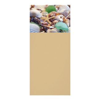 Cartões de vidro dos Seashells, da estrela do mar  Modelo De Panfleto Informativo