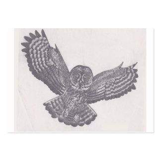 cartões de visitas da coruja