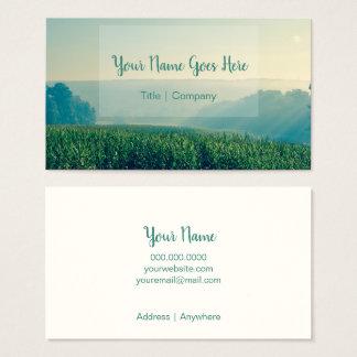 Cartões de visitas da natureza do campo de milho
