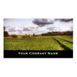 Cartões de visitas da paisagem do campo
