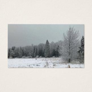 Cartões de visitas da paisagem do inverno de