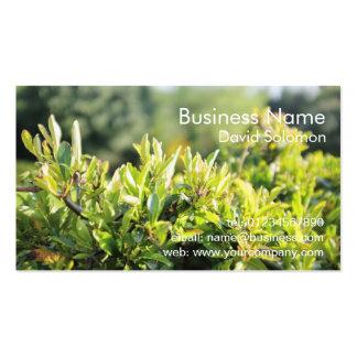 Cartões de visitas de jardinagem da natureza