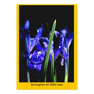 Cartões de visitas de troca Birmingham MI do museu