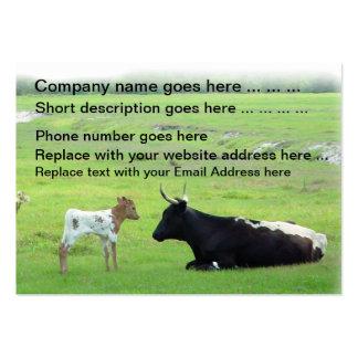 Cartões de visitas do gado da vitela das vacas de