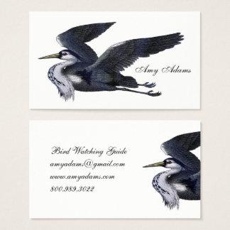 Cartões de visitas do guia da ornitologia