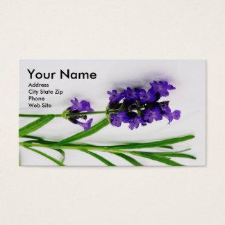 Cartões de visitas do óleo essencial com Lavender2