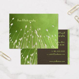 Cartões de visitas modelo, grama do trigo