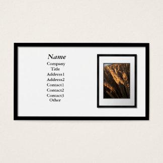 Cartões de visitas - moldura para retrato preta