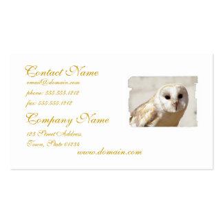 Cartões de visitas nevado da coruja de celeiro