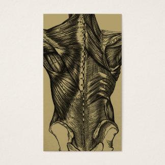 Cartões de visitas traseiros da anatomia do