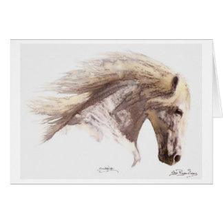 """Cartões do cavalo branco de """"SILVERWIND"""""""