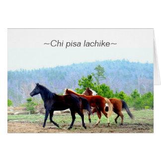 Cartões do Choctaw (lachike de pisa do qui)