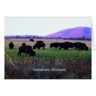 Cartões do Choctaw (Yunnush)
