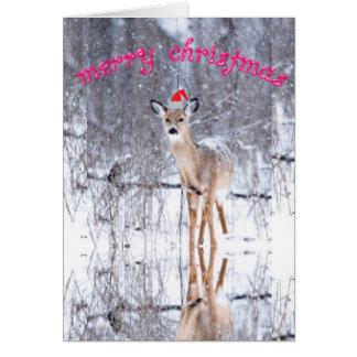 Cartões do Feliz Natal dos cervos