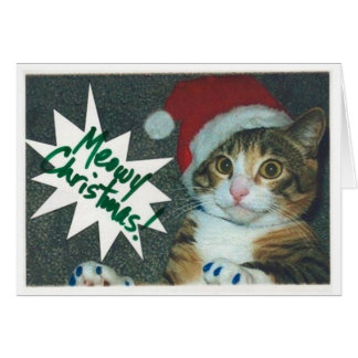 Cartões do gato do papai noel