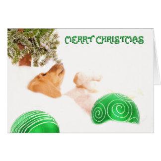Cartões do Natal de Saluki