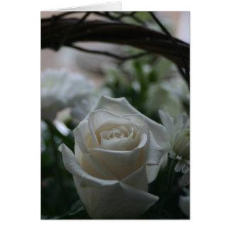 Cartões originais do rosa branco de cartão de