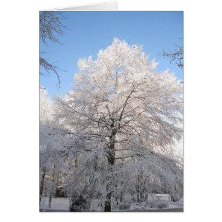 Carvalho nevado cartão de nota
