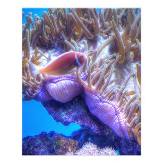 Casa do coral dos peixes panfleto personalizado