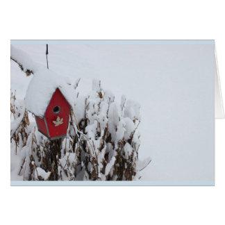 Casa vermelha do pássaro na neve - cartão