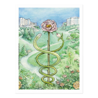 Casaco branco, mundo verde (cartão) cartão postal