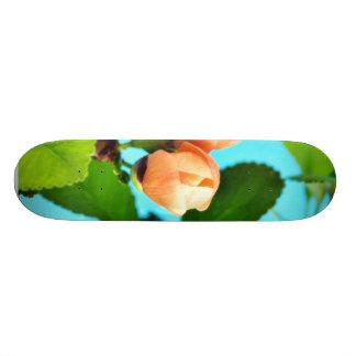 Casal de flores em botão skate