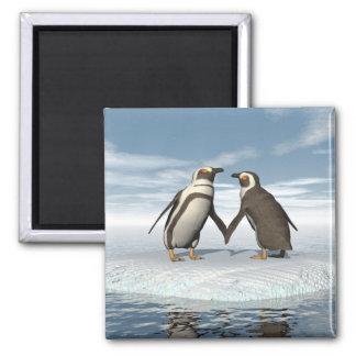 Casal dos pinguins imã