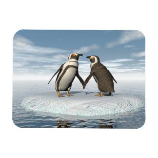 Casal dos pinguins ímã