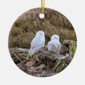 Casal nevado da coruja ornamentos
