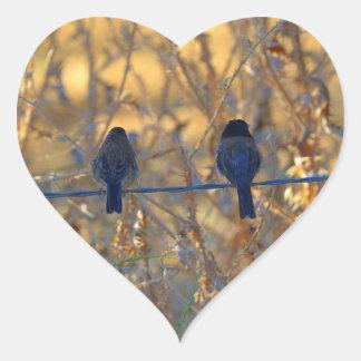 Casal romântico em um fio, foto do pássaro do adesivo coração