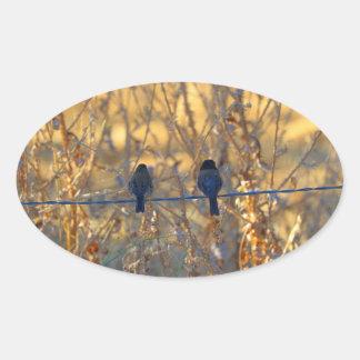 Casal romântico em um fio, foto do pássaro do adesivo oval