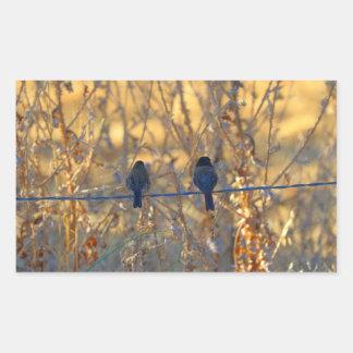 Casal romântico em um fio, foto do pássaro do adesivo retangular