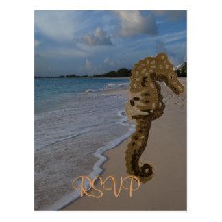 Casamento de praia do cavalo marinho de RSVP Cartões Postais